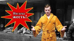 сколько платит Яндекс Дзен